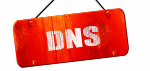 What is the DNS NS record?